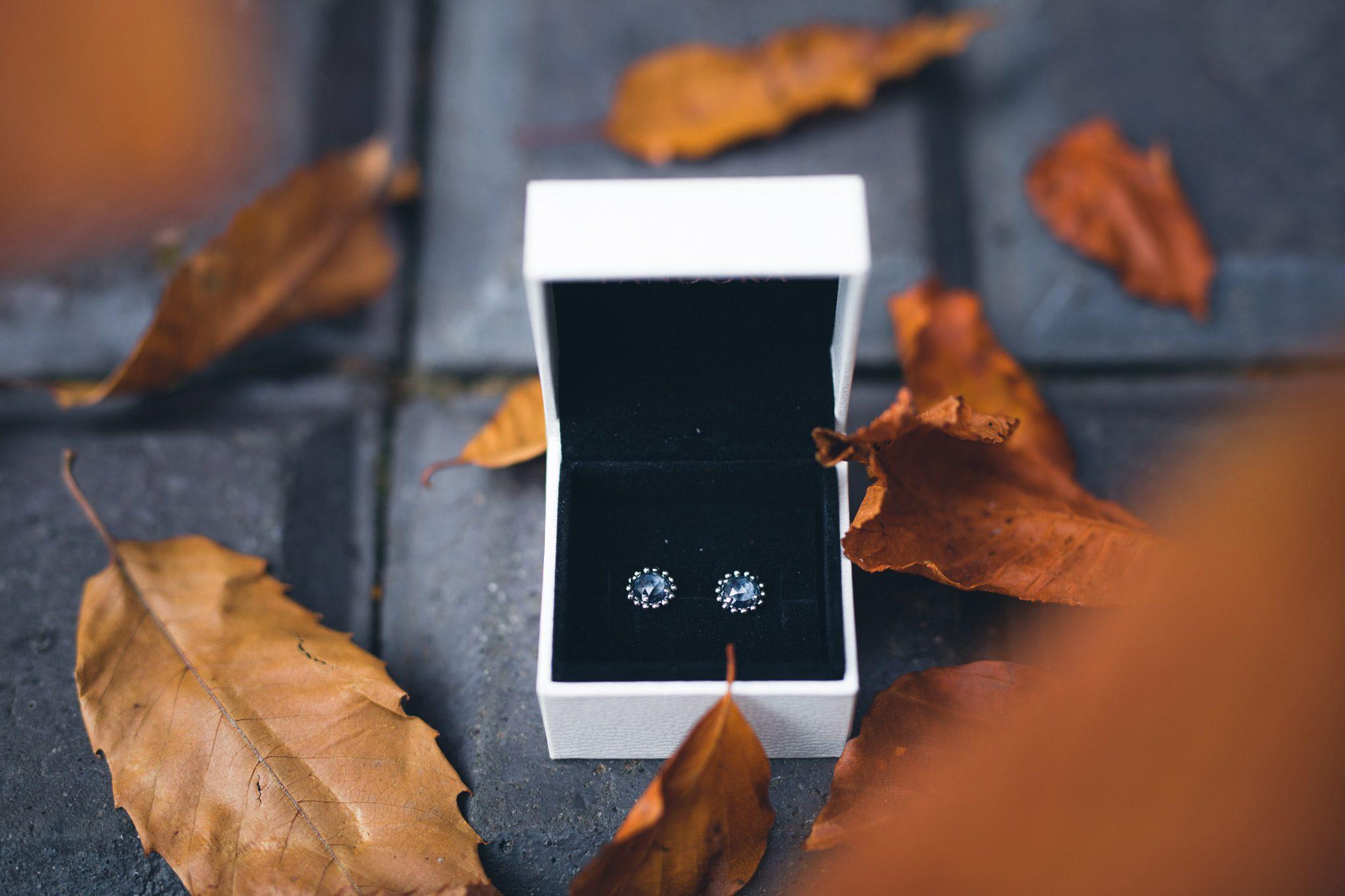 Jewellery in Autumn leaves at Yeldersley Hall